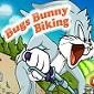 بازی آنلاین دوچرخه سواری باگزبانی